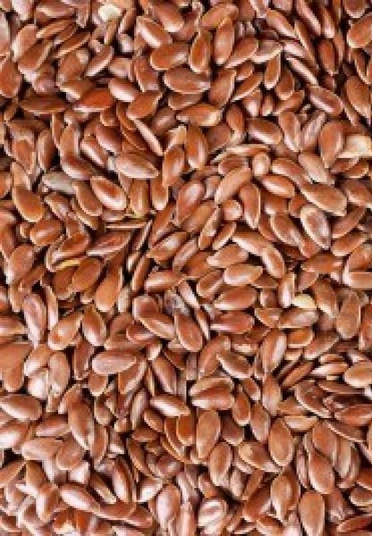 11689964-a-texture-from-a-flax-seeds